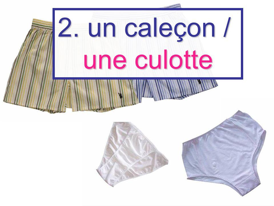 2. un caleçon / une culotte