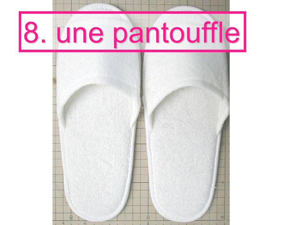 8. une pantouffle