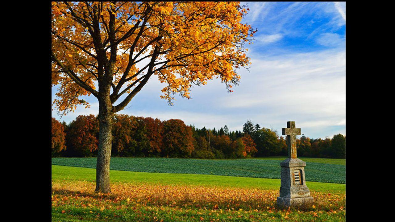 Certains croient que la mort nous éveille à la vie, Dautres nattendent rien, nont aucune espérance. Laissons donc à chacun le choix de ses croyances J