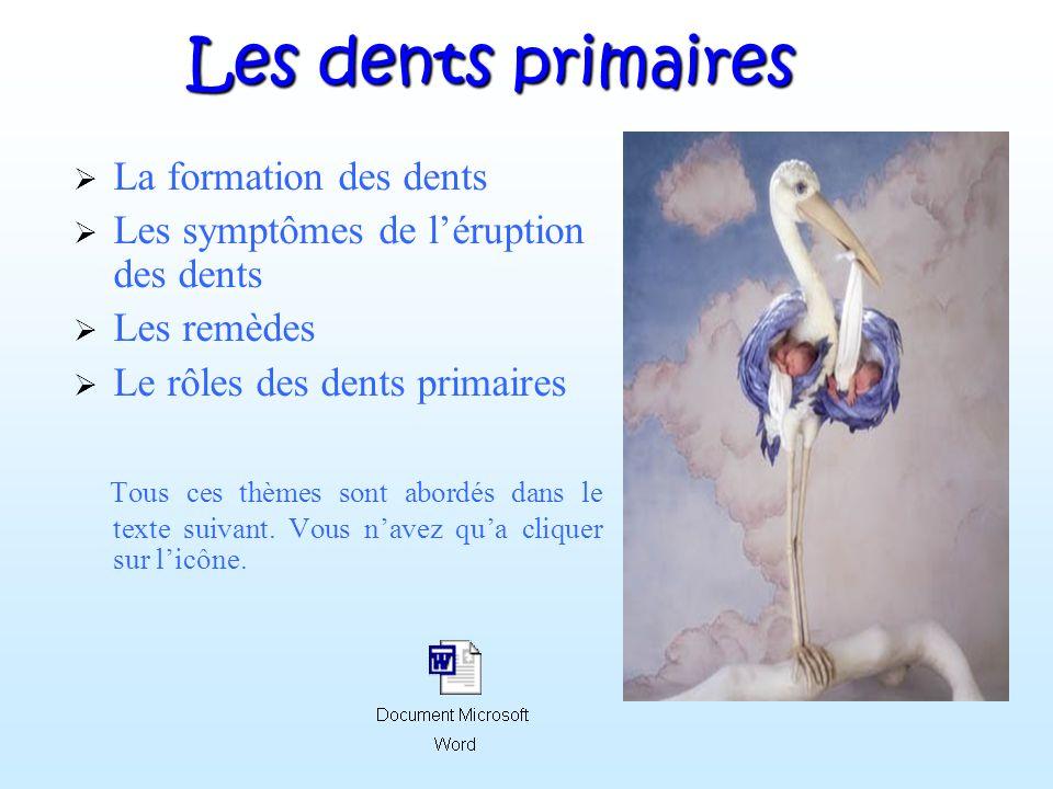 Les dents primaires La formation des dents Les symptômes de léruption des dents Les remèdes Le rôles des dents primaires Tous ces thèmes sont abordés