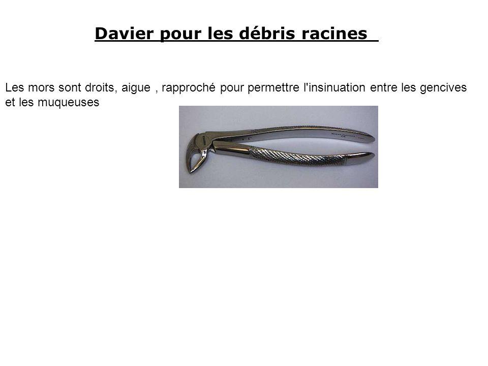 Davier pour les débris racines Les mors sont droits, aigue, rapproché pour permettre l insinuation entre les gencives et les muqueuses