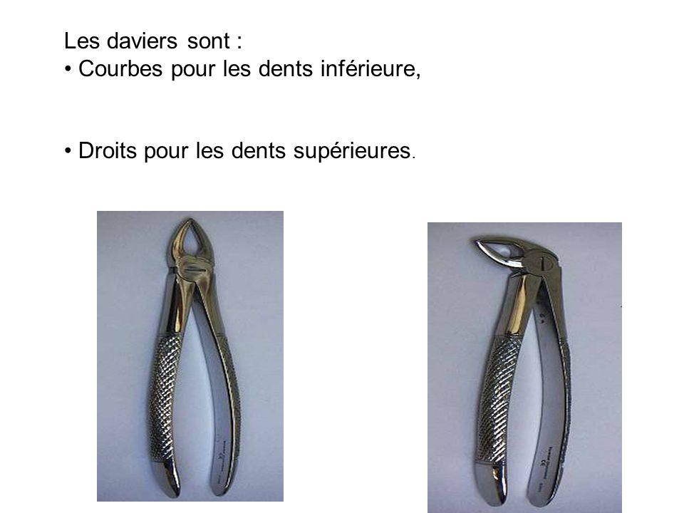 Les daviers sont : Courbes pour les dents inférieure, Droits pour les dents supérieures.