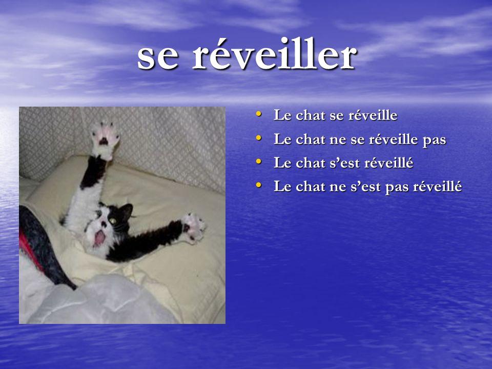 se réveiller Le chat se réveille Le chat se réveille Le chat ne se réveille pas Le chat ne se réveille pas Le chat sest réveillé Le chat sest réveillé Le chat ne sest pas réveillé Le chat ne sest pas réveillé