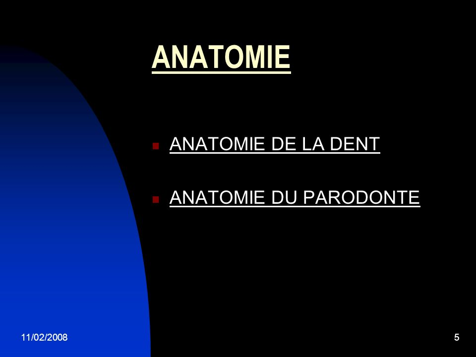 11/02/20085 ANATOMIE ANATOMIE DE LA DENT ANATOMIE DU PARODONTE