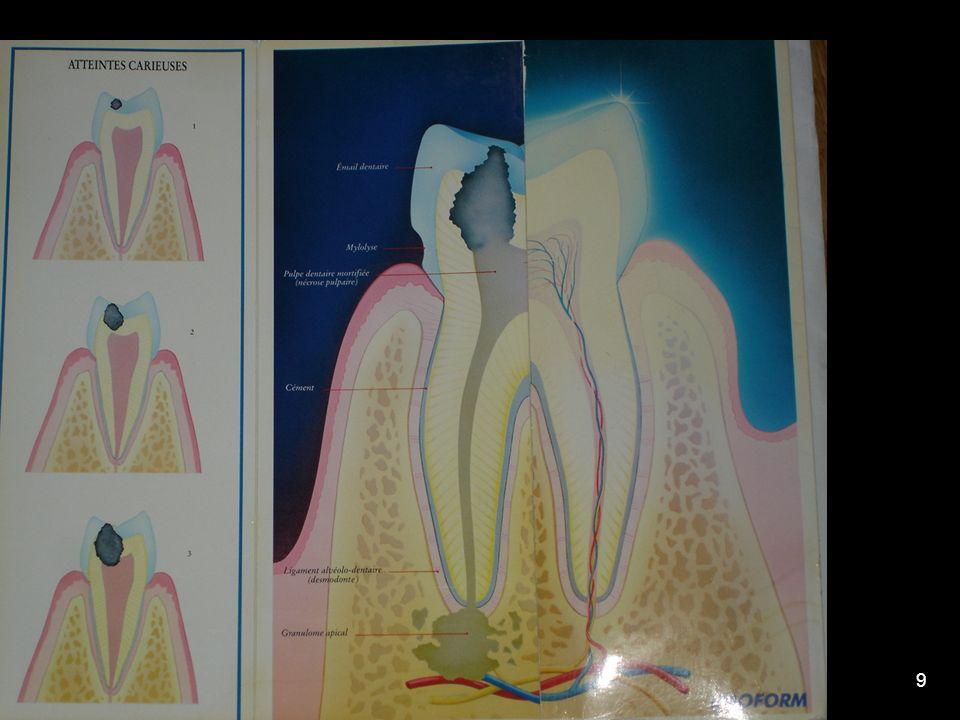 11/02/200820 CONCLUSION : Si la CNAMTS et les Chirurgiens- Dentistes sont les signataires de la convention qui a mis en place la campagne MT Dents, celle-ci ne peut exister sans les partenaires relais essentiels que sont les parents, les enseignants, les médecins et bien sûr LES INFIRMIERES SCOLAIRES !