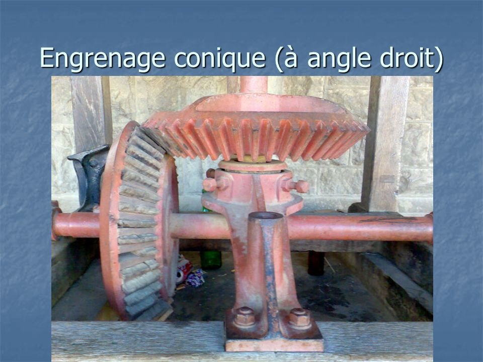 Engrenage conique (à angle droit)