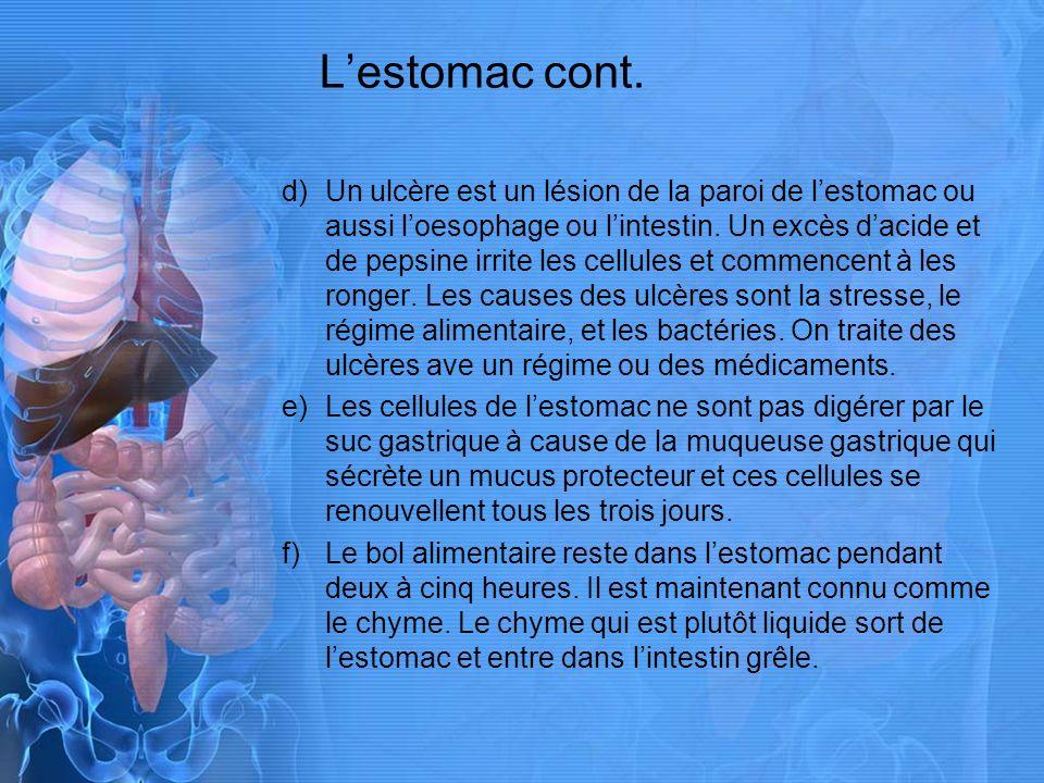 Lestomac cont.d)Un ulcère est un lésion de la paroi de lestomac ou aussi loesophage ou lintestin.