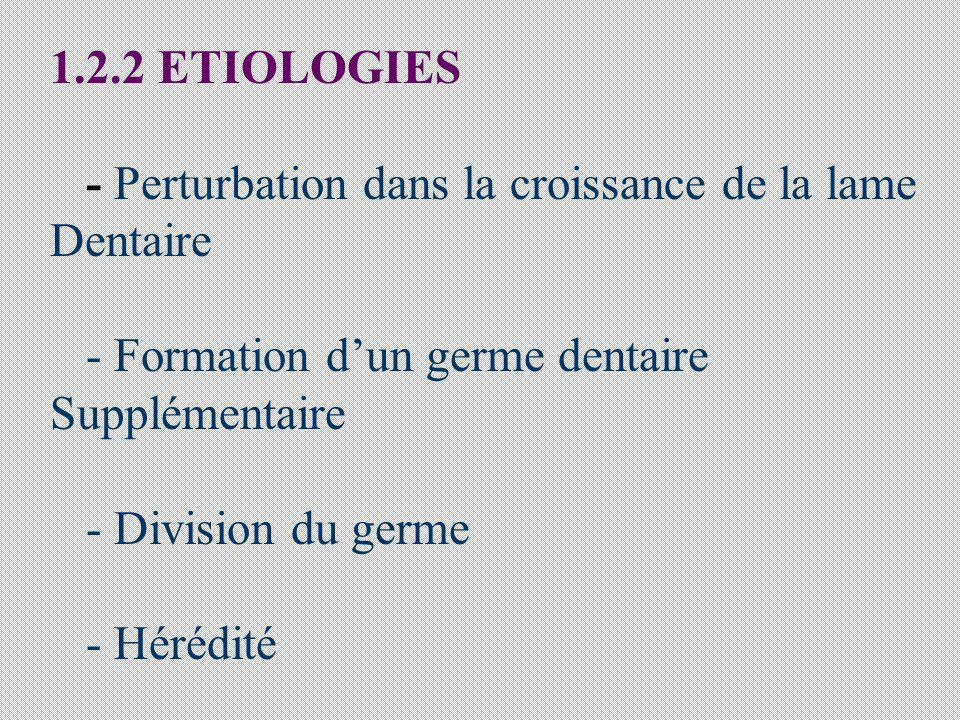 1.2.2 ETIOLOGIES - Perturbation dans la croissance de la lame Dentaire - Formation dun germe dentaire Supplémentaire - Division du germe - Hérédité