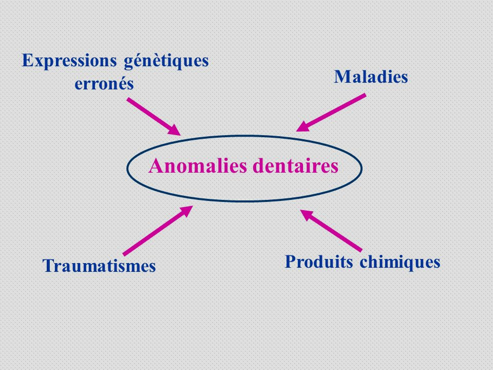 MALADIES SYSTEMIQUES - Perturbations du métabolisme Hypovitaminose A, D et C Hypocalcémie néonatale - Perturbations hormonales Hypothyroïdie Hypoparathyroîdie