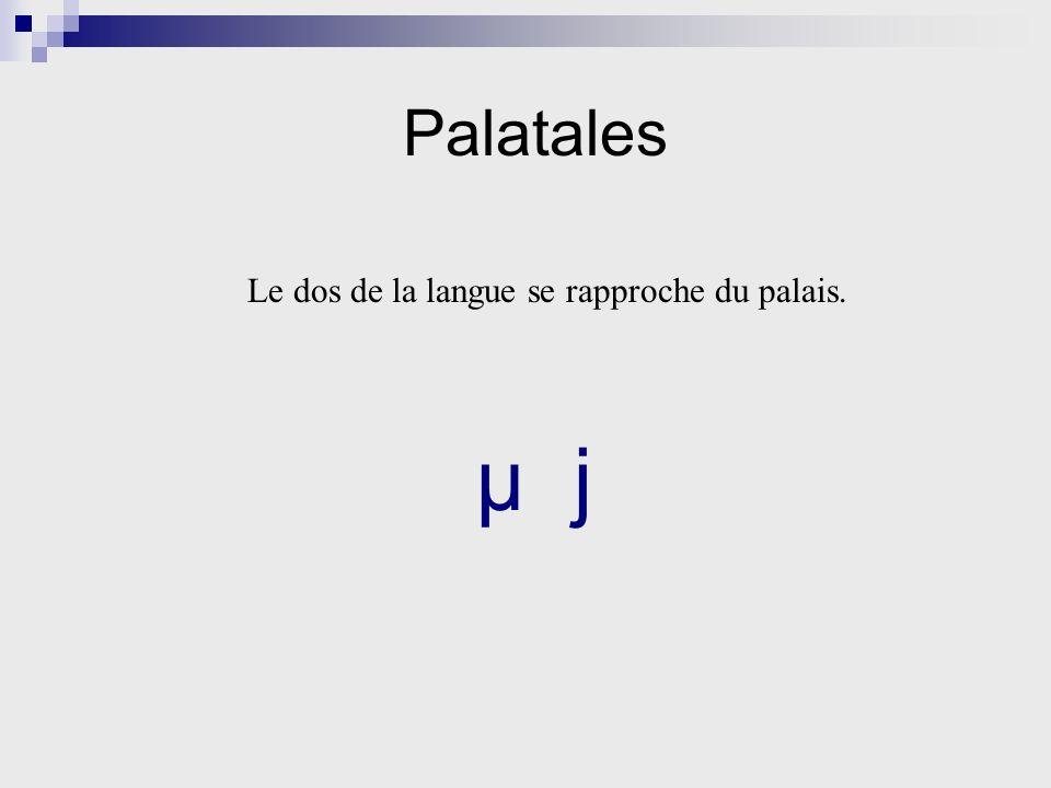 Palatales Le dos de la langue se rapproche du palais. µ j