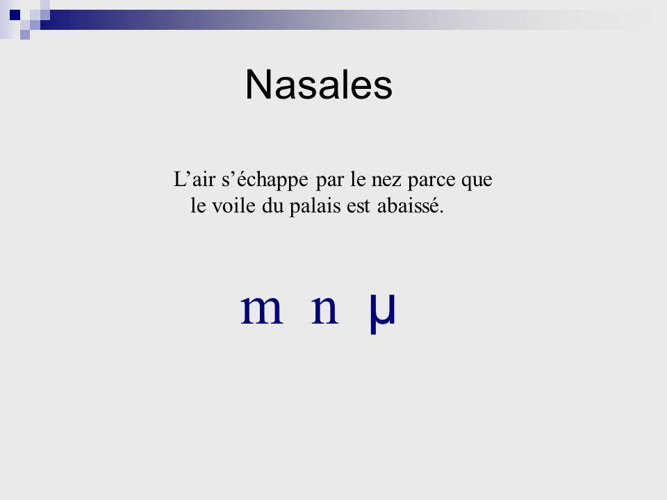 Nasales Lair séchappe par le nez parce que le voile du palais est abaissé. m n µ