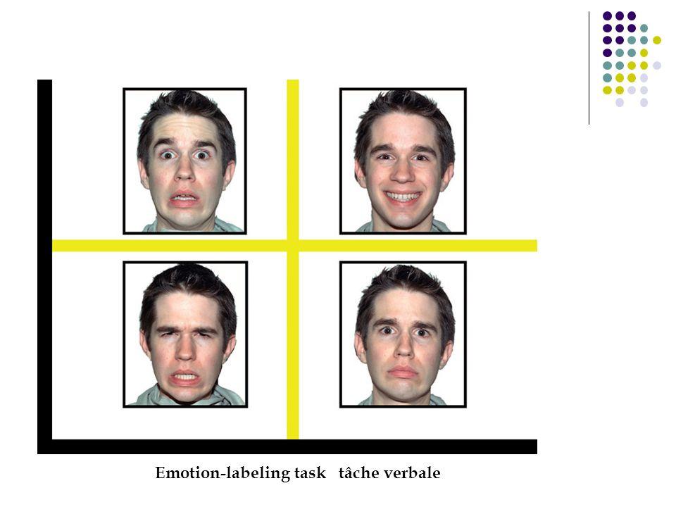 Emotion-labeling task tâche verbale