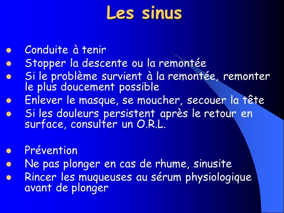 Les sinus Symptômes Douleurs faciales Impression de mal de dents Saignements au niveau du nez, des pommettes Evacuation de muqueuses