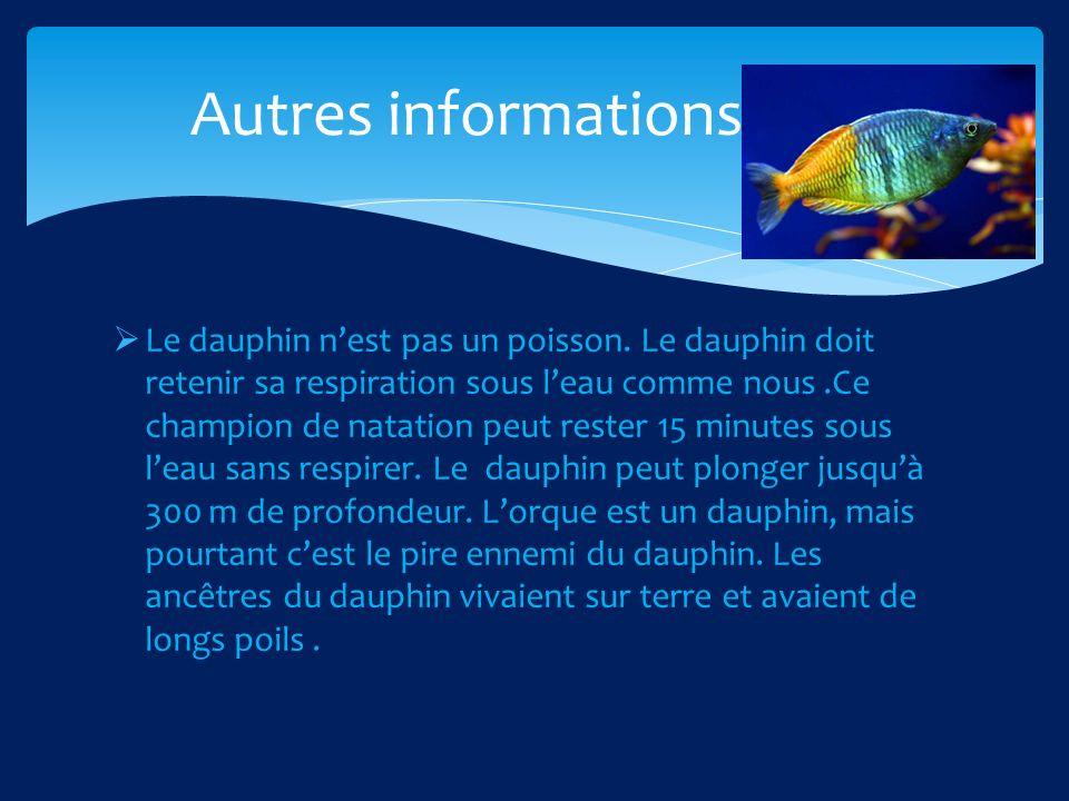 Le dauphin nest pas un poisson.