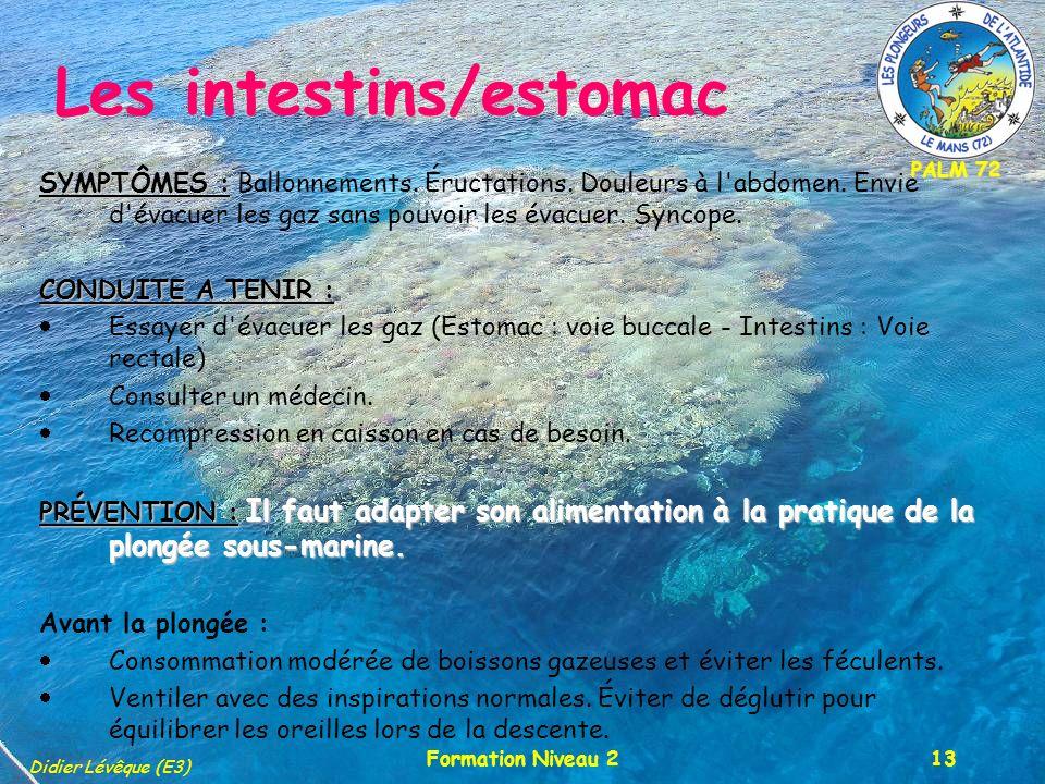PALM 72 Didier Lévêque (E3) Formation Niveau 213 Les intestins/estomac SYMPTÔMES : SYMPTÔMES : Ballonnements. Éructations. Douleurs à l'abdomen. Envie