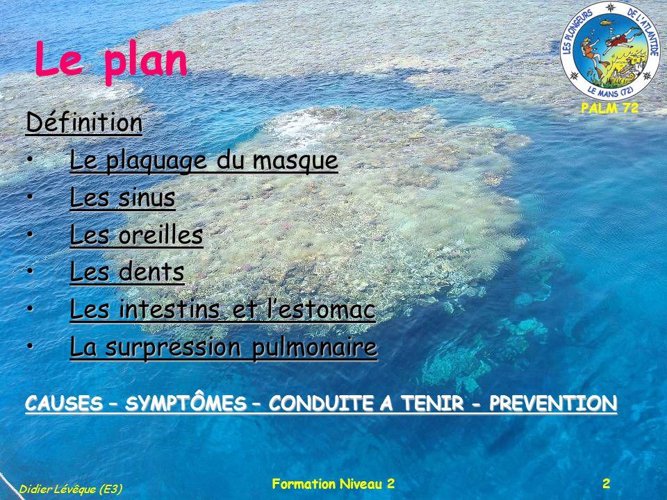 PALM 72 Didier Lévêque (E3) Formation Niveau 213 Les intestins/estomac SYMPTÔMES : SYMPTÔMES : Ballonnements.