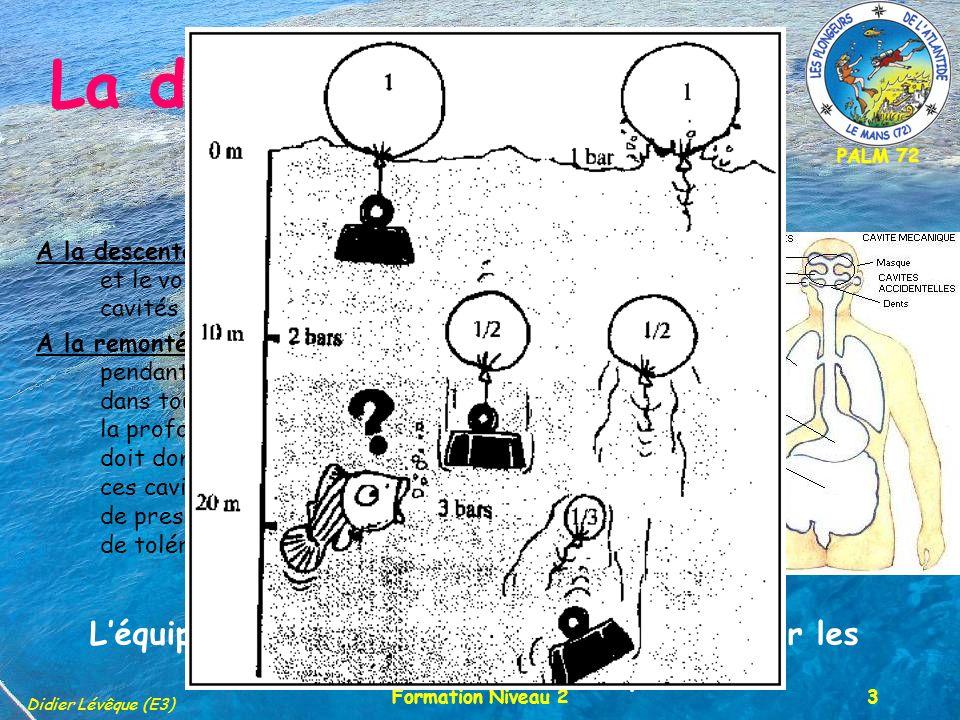PALM 72 Didier Lévêque (E3) Formation Niveau 23 La définition A la descente, la pression augmente avec la profondeur et le volume dair (ou de gaz) contenu dans les cavités du corps humain diminue A la remontée, lair respiré à la pression ambiante pendant la plongée, grâce au détendeur, présent dans toutes les cavités, augmente de volume quand la profondeur et la pression diminuent.
