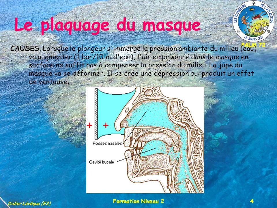PALM 72 Didier Lévêque (E3) Formation Niveau 25 Le plaquage du masque SYMPTÔMES : EN IMMERSION : L effet ventouse attire le sang vers la surface du visage.