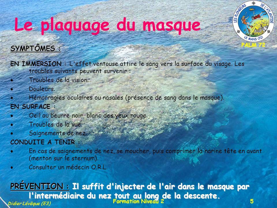 PALM 72 Didier Lévêque (E3) Formation Niveau 25 Le plaquage du masque SYMPTÔMES : EN IMMERSION : L'effet ventouse attire le sang vers la surface du vi