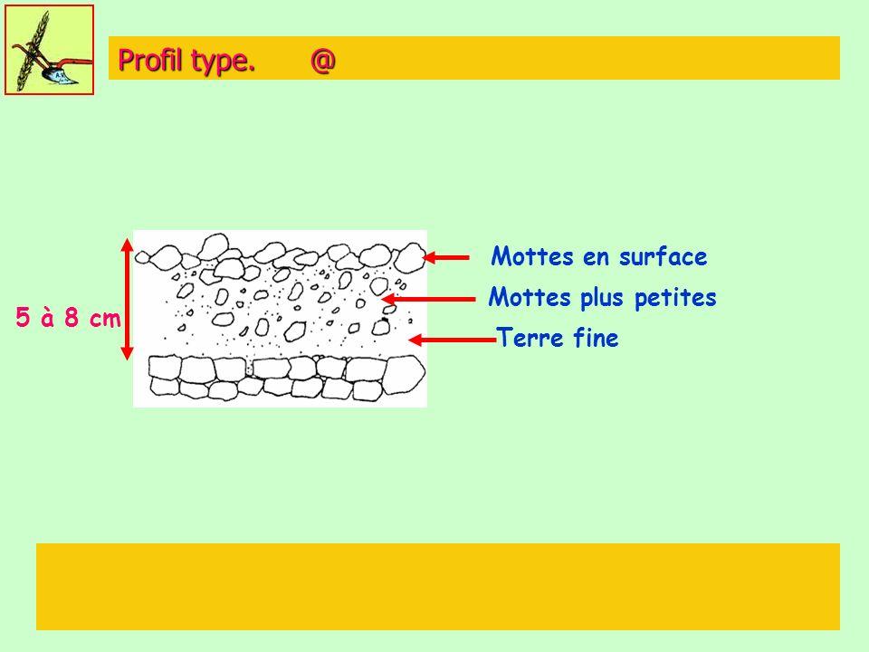Profil type. @ 5 à 8 cm Mottes en surface Mottes plus petites Terre fine