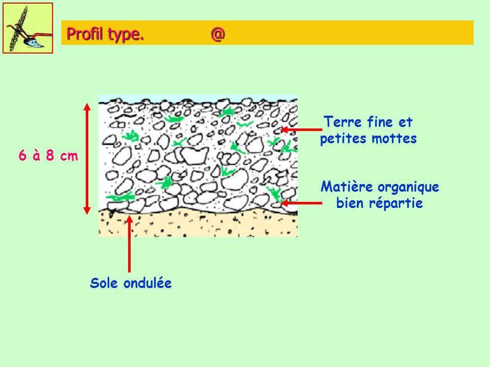 Profil type. @ 6 à 8 cm Sole ondulée Terre fine et petites mottes Matière organique bien répartie