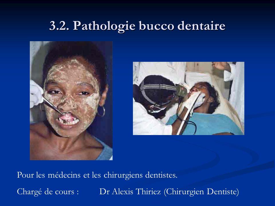 3.2. Pathologie bucco dentaire Pour les médecins et les chirurgiens dentistes. Chargé de cours :Dr Alexis Thiriez (Chirurgien Dentiste)