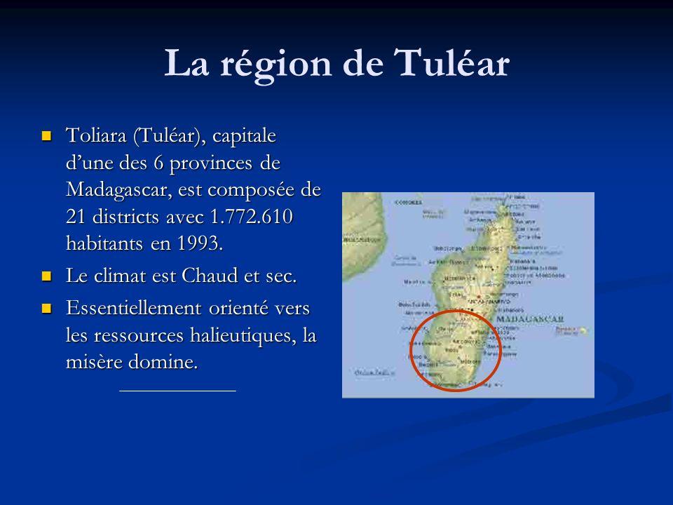 La région de Tuléar Toliara (Tuléar), capitale dune des 6 provinces de Madagascar, est composée de 21 districts avec 1.772.610 habitants en 1993. Toli