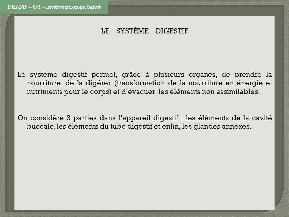 LE SYSTÈME DIGESTIF Le système digestif permet, grâce à plusieurs organes, de prendre la nourriture, de la digérer (transformation de la nourriture en