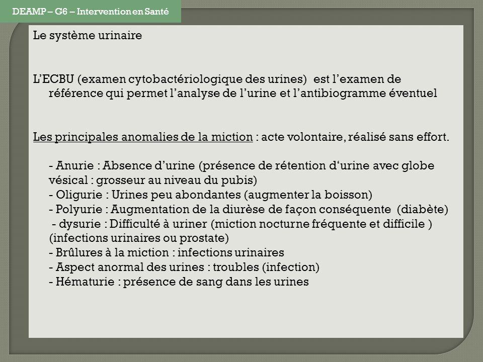 Le système urinaire LECBU (examen cytobactériologique des urines) est lexamen de référence qui permet lanalyse de lurine et lantibiogramme éventuel Le