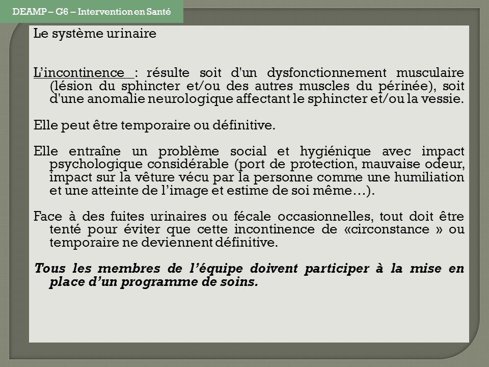 Le système urinaire Lincontinence : résulte soit d'un dysfonctionnement musculaire (lésion du sphincter et/ou des autres muscles du périnée), soit d'u