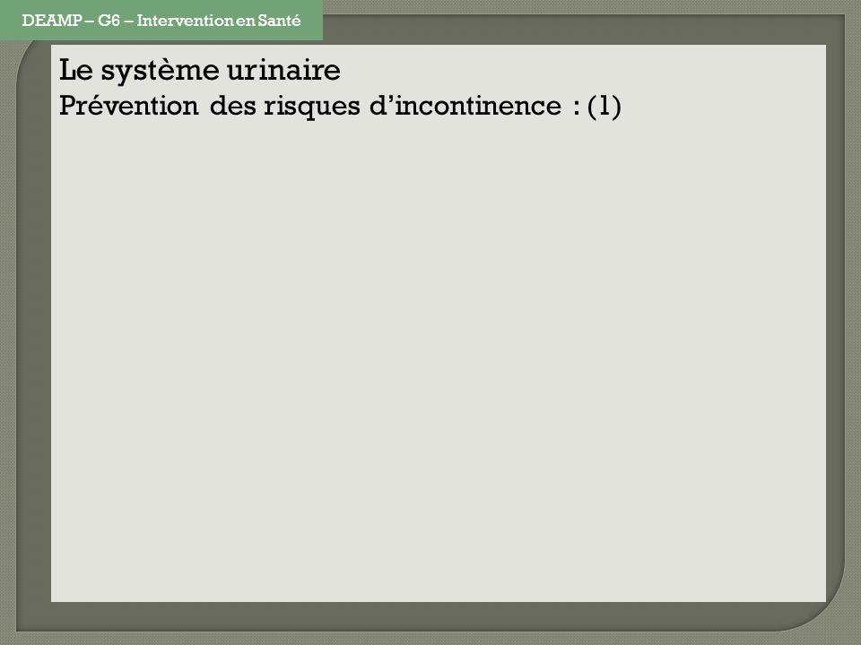 Le système urinaire Prévention des risques dincontinence : (1) DEAMP – G6 – Intervention en Santé