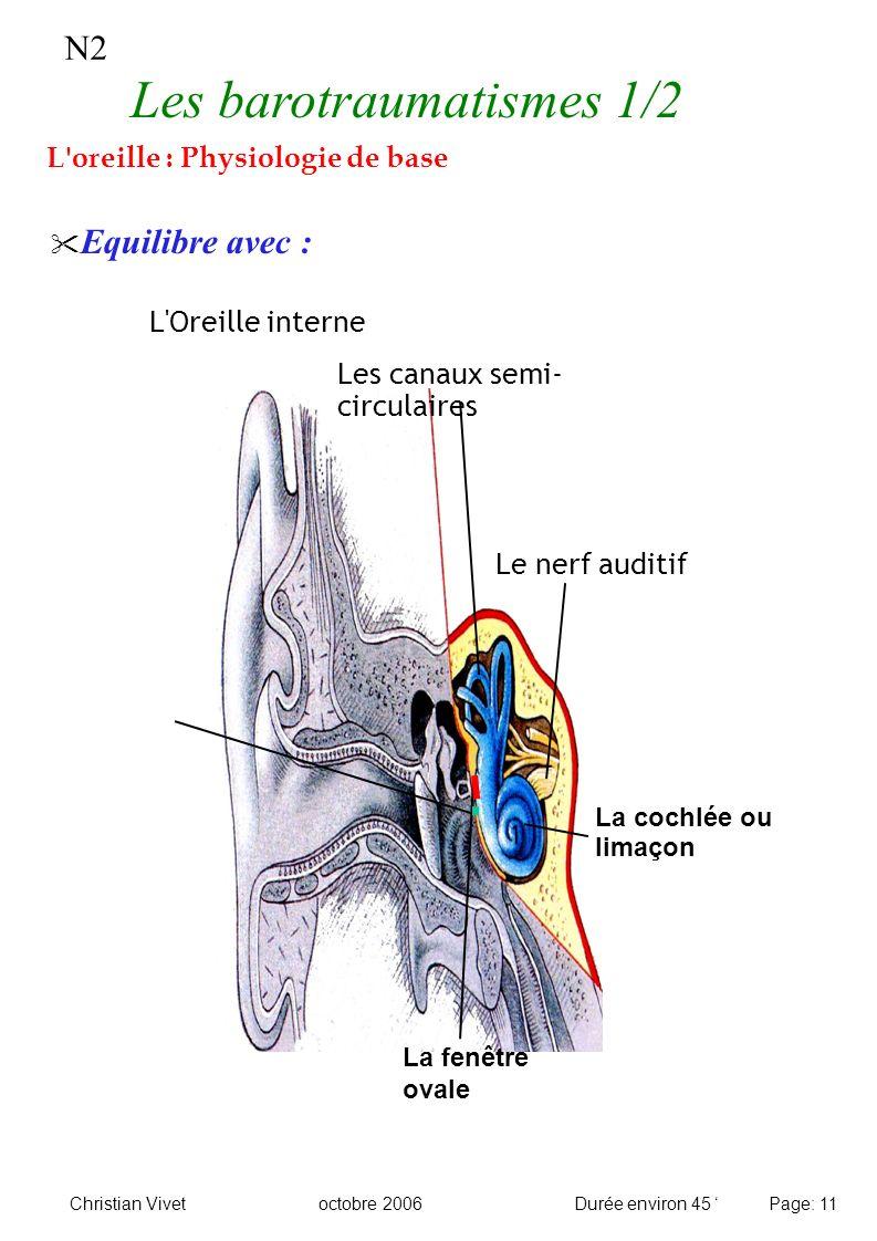N2 Equilibre avec : L'Oreille interne Le nerf auditif Les canaux semi- circulaires La fenêtre ovale La cochlée ou limaçon Les barotraumatismes 1/2 L'o