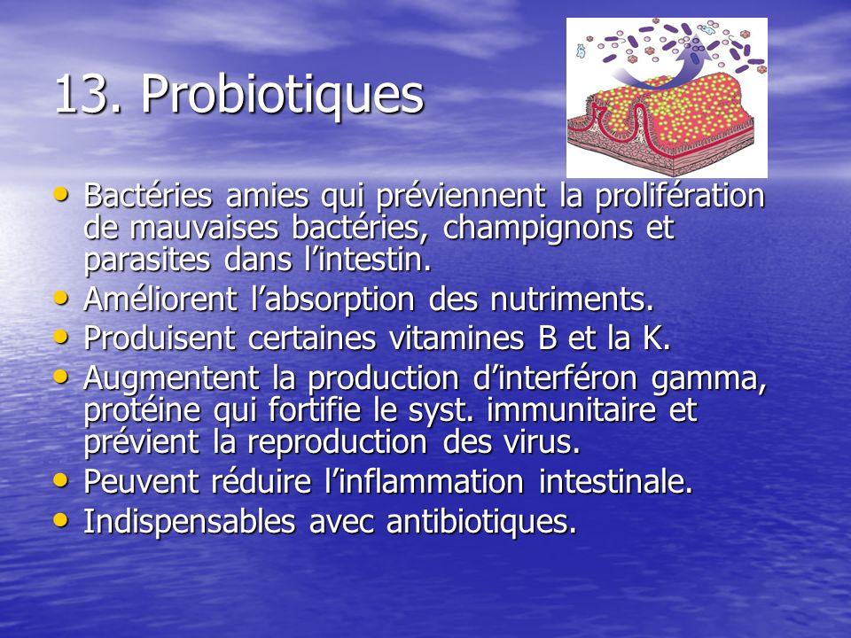 13. Probiotiques Bactéries amies qui préviennent la prolifération de mauvaises bactéries, champignons et parasites dans lintestin. Bactéries amies qui