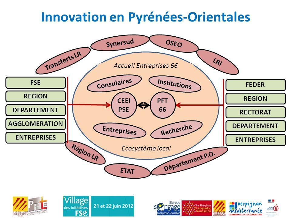 Innovation en Pyrénées-Orientales CEEI PSE PFT 66 FEDER REGION RECTORAT DEPARTEMENT ENTREPRISES FSE REGION DEPARTEMENT AGGLOMERATION ENTREPRISES Consu