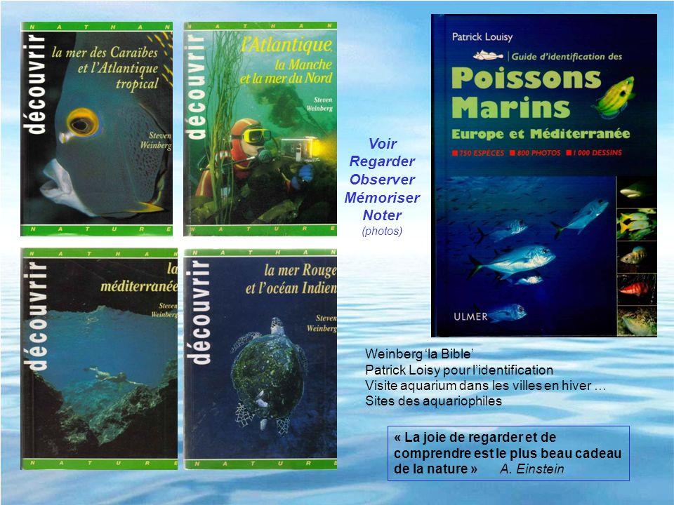 Weinberg la Bible Patrick Loisy pour lidentification Visite aquarium dans les villes en hiver … Sites des aquariophiles Voir Regarder Observer Mémoris