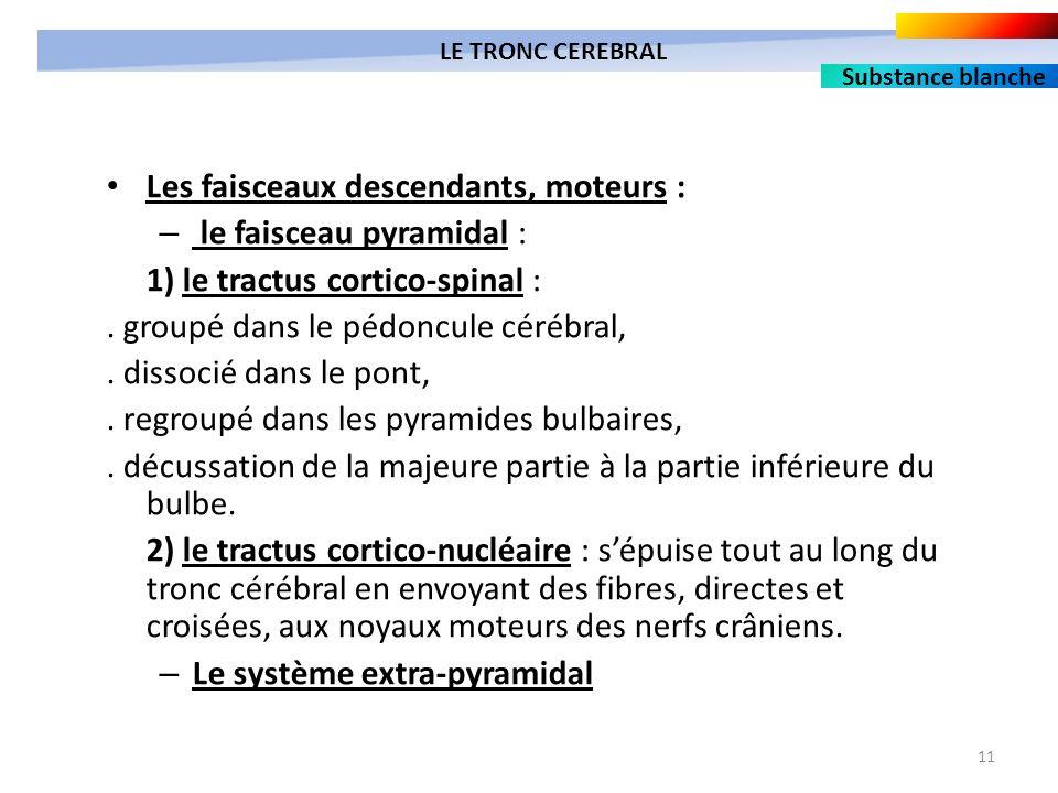 11 Les faisceaux descendants, moteurs : – le faisceau pyramidal : 1) le tractus cortico-spinal :. groupé dans le pédoncule cérébral,. dissocié dans le