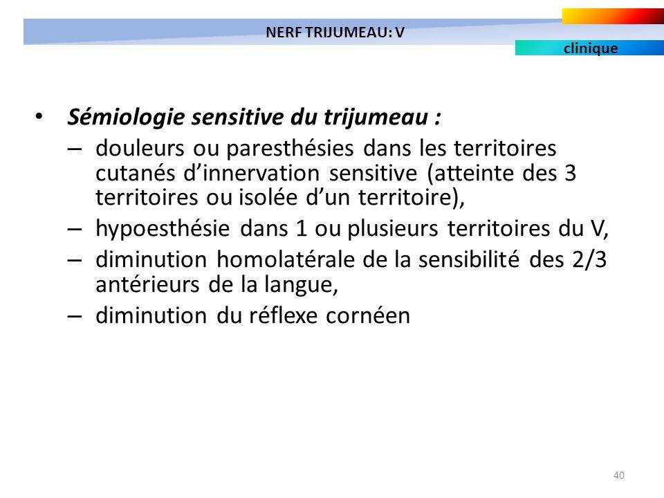 40 Sémiologie sensitive du trijumeau : – douleurs ou paresthésies dans les territoires cutanés dinnervation sensitive (atteinte des 3 territoires ou i