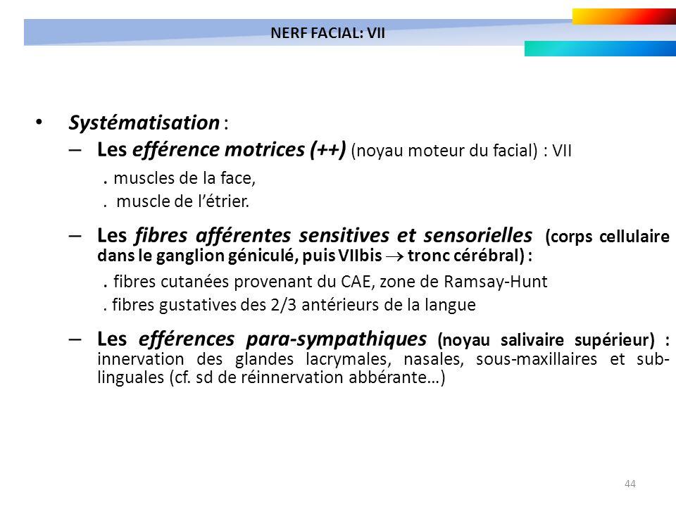 44 Systématisation : – Les efférence motrices (++) (noyau moteur du facial) : VII. muscles de la face,. muscle de létrier. – Les fibres afférentes sen