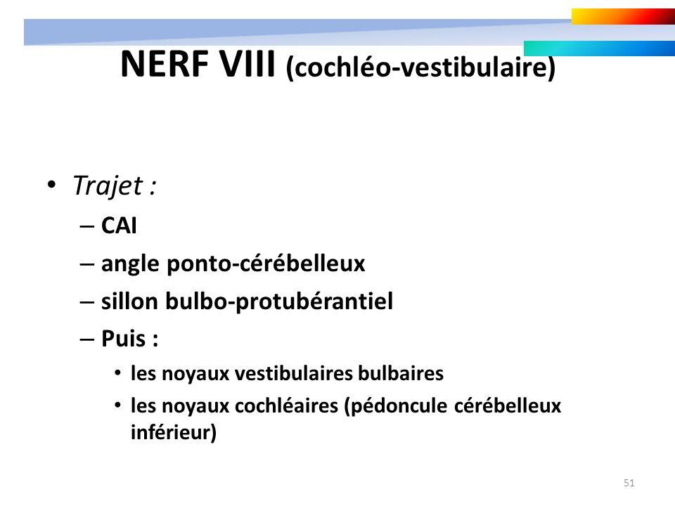51 NERF VIII (cochléo-vestibulaire) Trajet : – CAI – angle ponto-cérébelleux – sillon bulbo-protubérantiel – Puis : les noyaux vestibulaires bulbaires