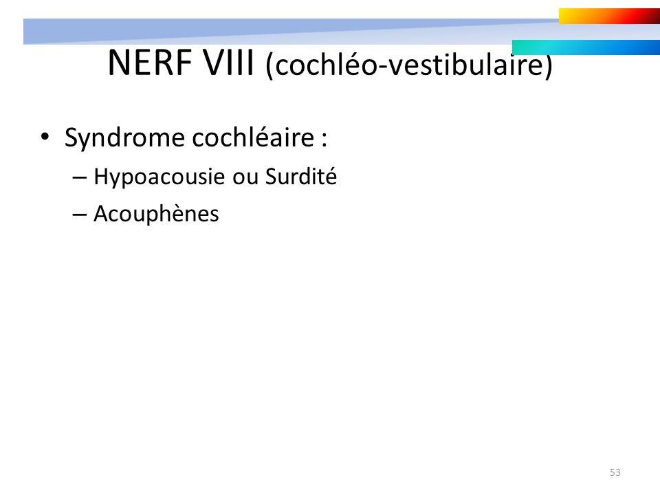 53 NERF VIII (cochléo-vestibulaire) Syndrome cochléaire : – Hypoacousie ou Surdité – Acouphènes