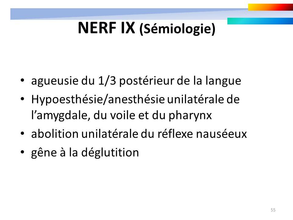 55 NERF IX (Sémiologie) agueusie du 1/3 postérieur de la langue Hypoesthésie/anesthésie unilatérale de lamygdale, du voile et du pharynx abolition uni