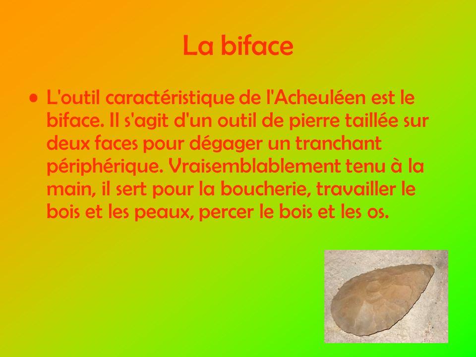 La biface L outil caractéristique de l Acheuléen est le biface.