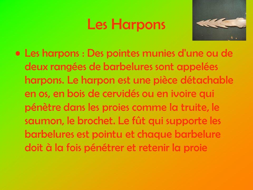 Les Harpons Les harpons : Des pointes munies d une ou de deux rangées de barbelures sont appelées harpons.