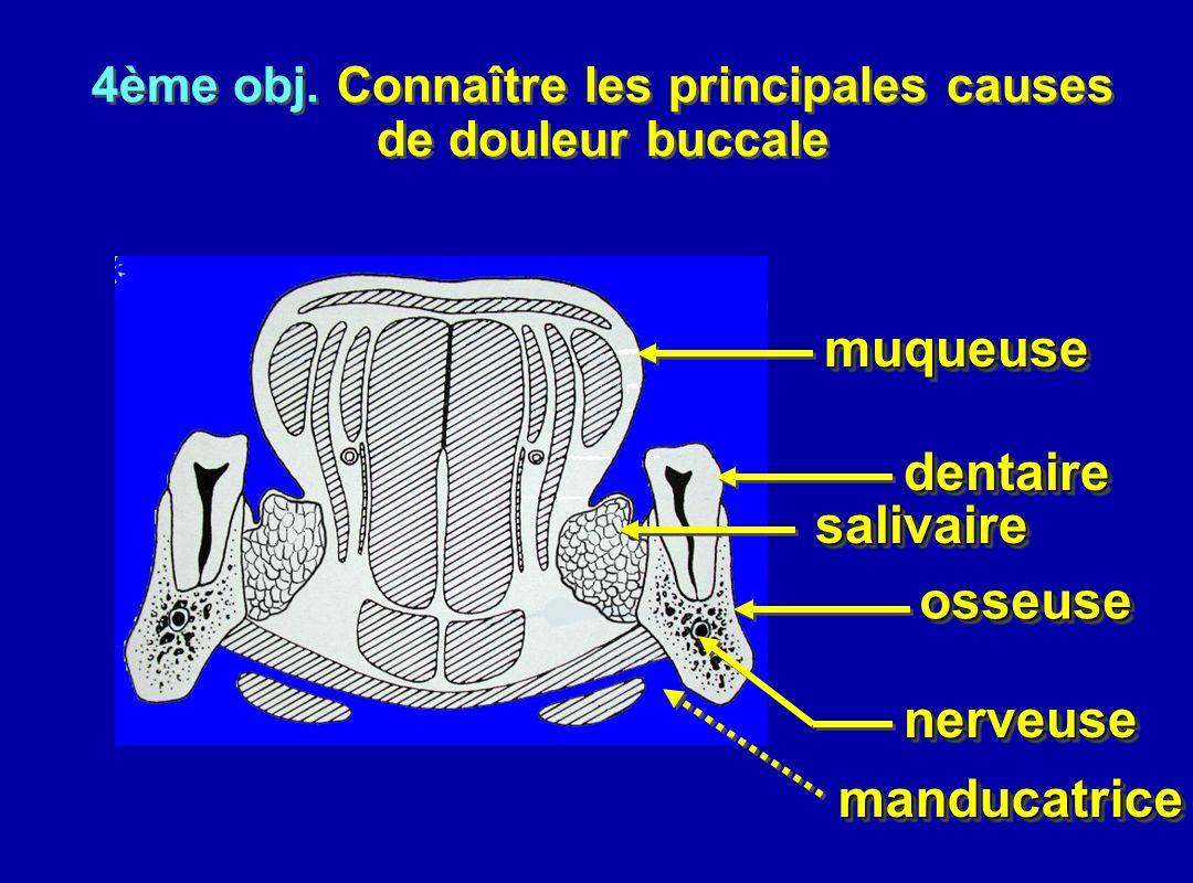 muqueusemuqueuse dentairedentaire salivairesalivaire osseuseosseuse nerveusenerveuse 4ème obj. Connaître les principales causes de douleur buccale 4èm