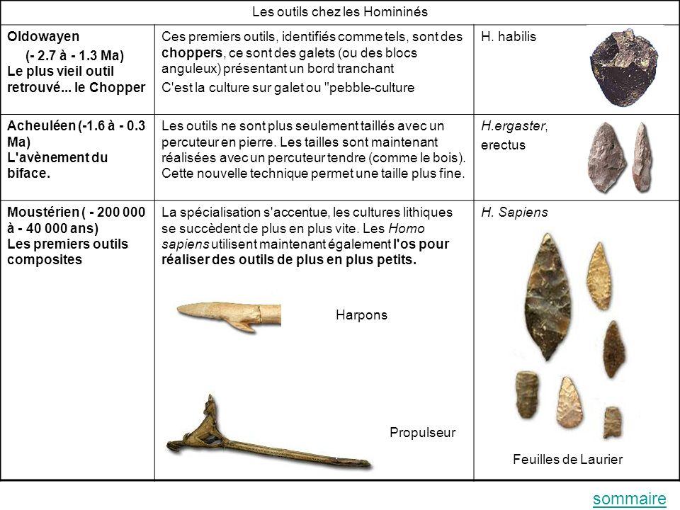 Les outils chez les Homininés Oldowayen (- 2.7 à - 1.3 Ma) Le plus vieil outil retrouvé...