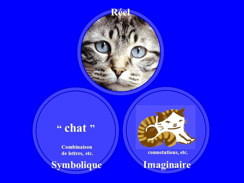 chat Combinaison de lettres, etc. Symbolique Imaginaire Concept, connotations, etc. Réel