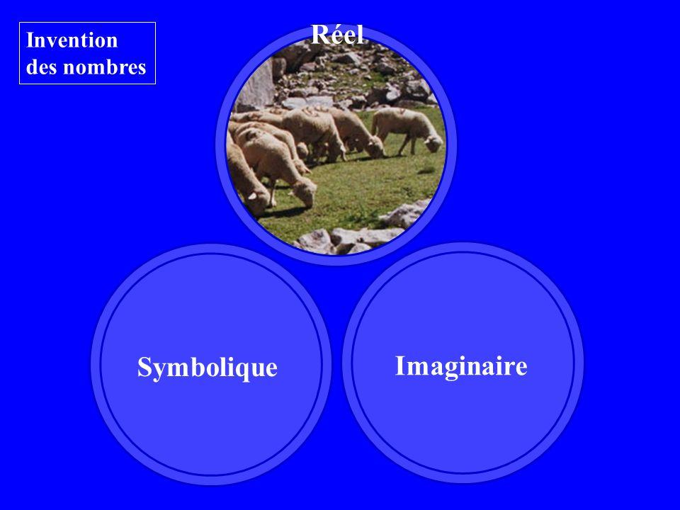 Invention des nombres Réel Imaginaire Symbolique