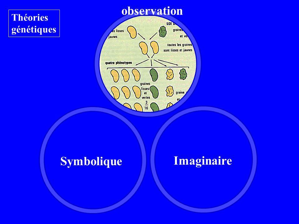 observation Théories génétiques Imaginaire Symbolique