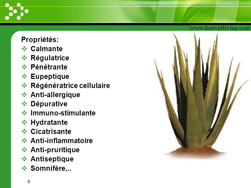 www.themegallery.com 6 Propriétés: Calmante Régulatrice Pénétrante Eupeptique Régénératrice cellulaire Anti-allergique Dépurative Immuno-stimulante Hy