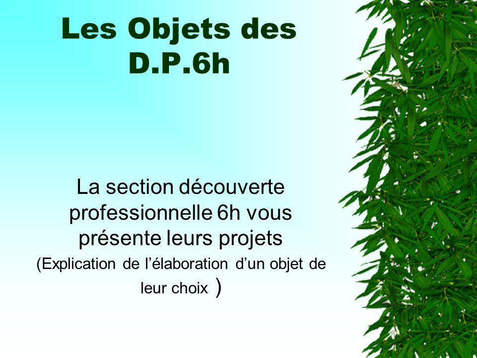 Les Objets des D.P.6h La section découverte professionnelle 6h vous présente leurs projets (Explication de lélaboration dun objet de leur choix )